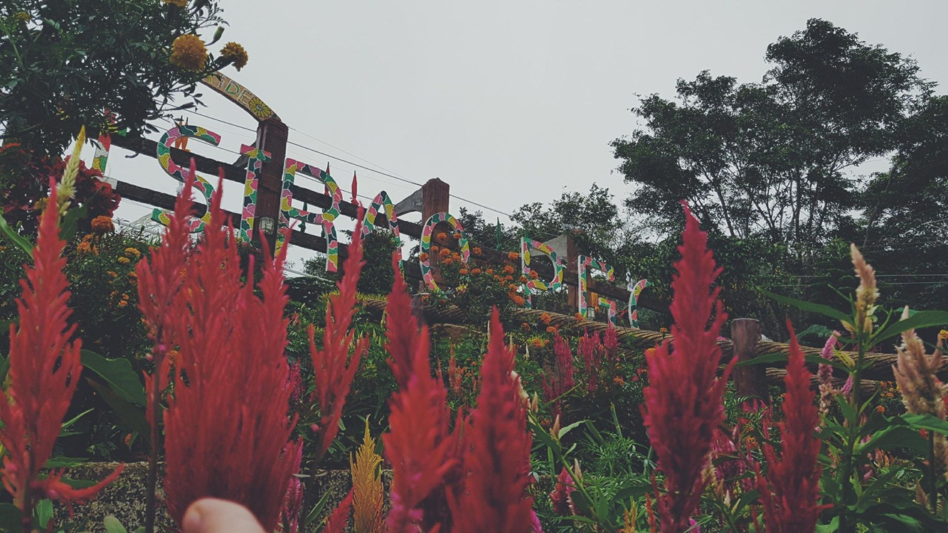 Sirao Pictorial Garden and Camping Site - Cebu City