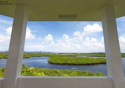 Mangrove View Deck - Siargao Island Boat Tour